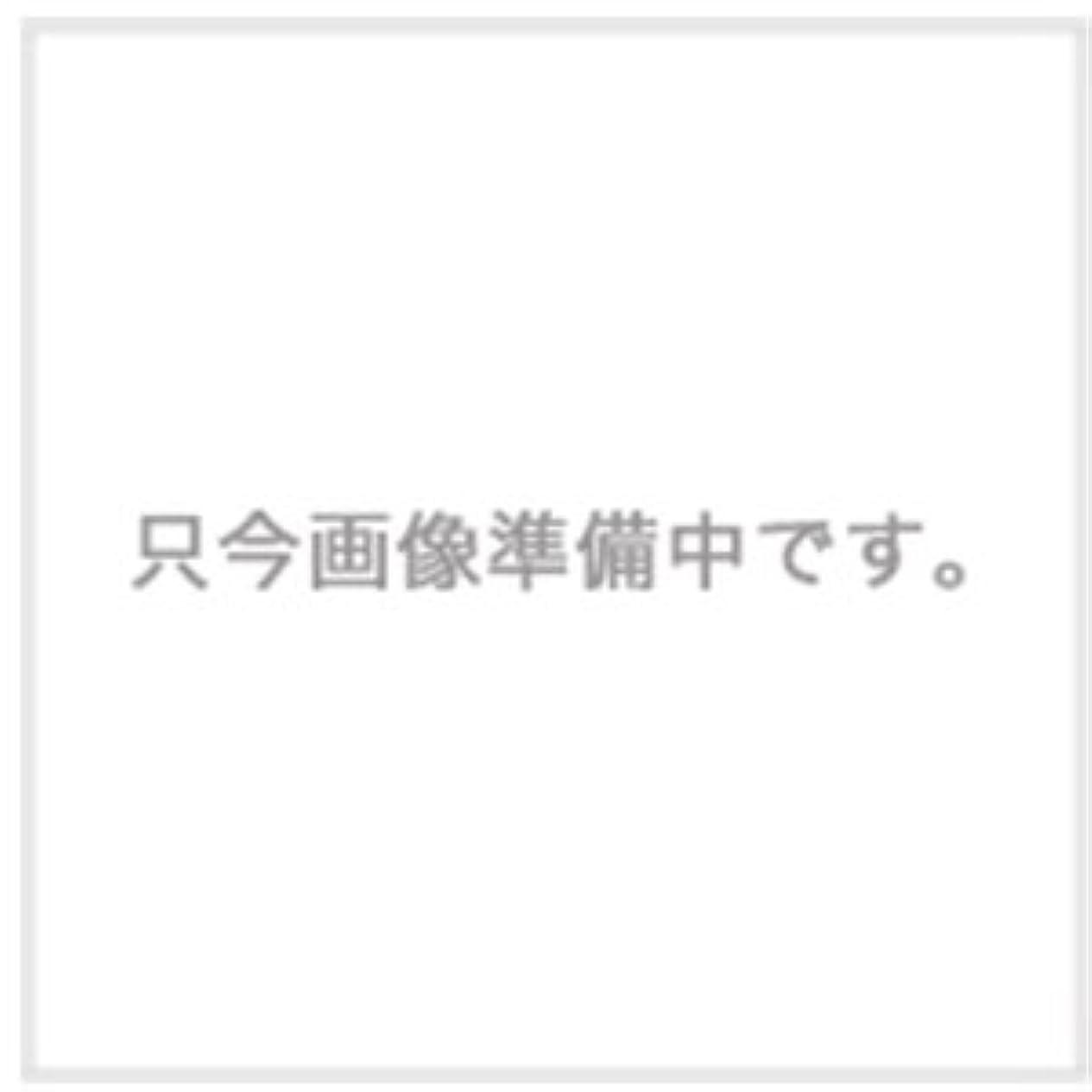 贅沢大胆同化ハホニコ ザ?ラメラメ トリートメント No.1 1000g用ハードケース