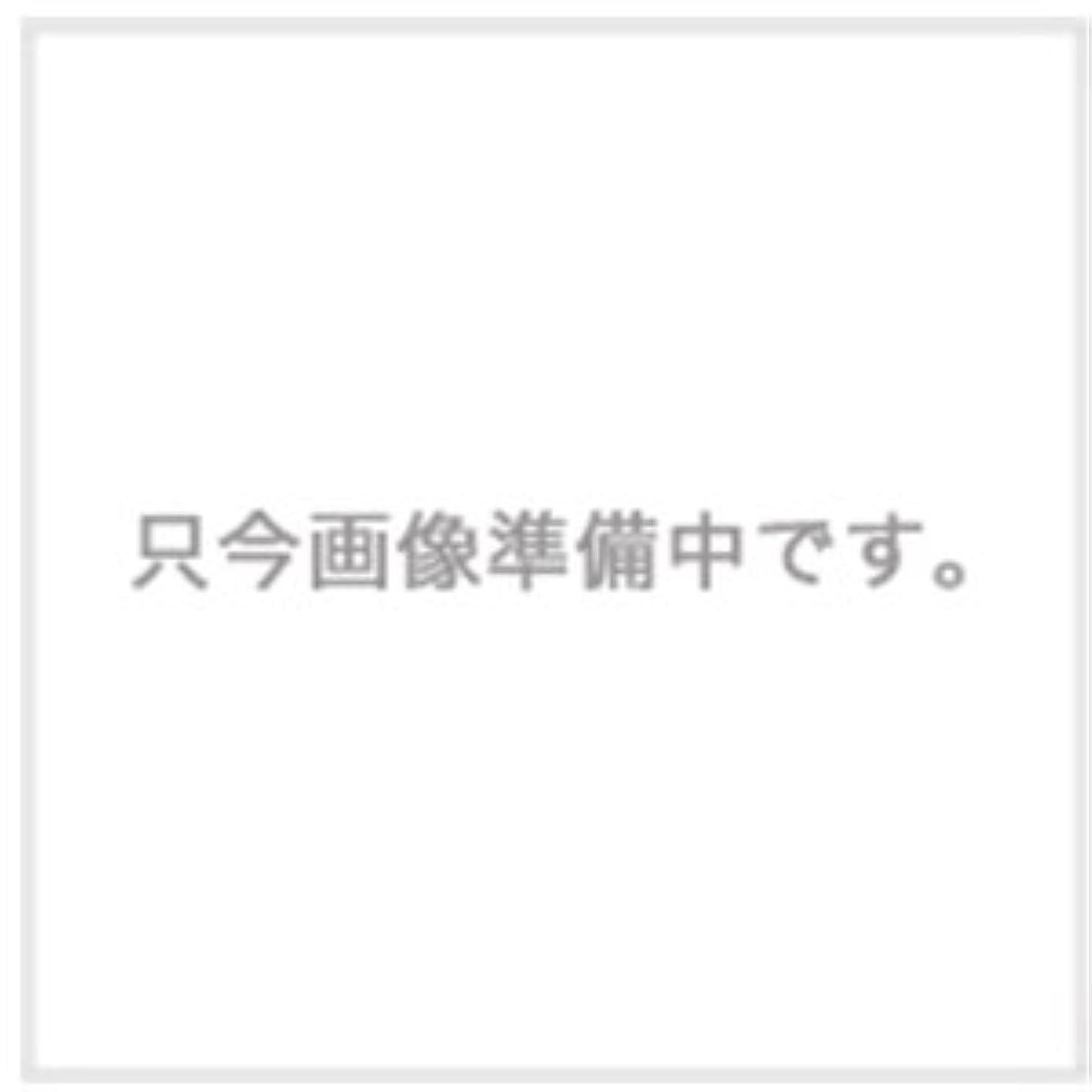 シンジケート桃ハウスハホニコ ザ?ラメラメ トリートメント No.1 1000g用ハードケース