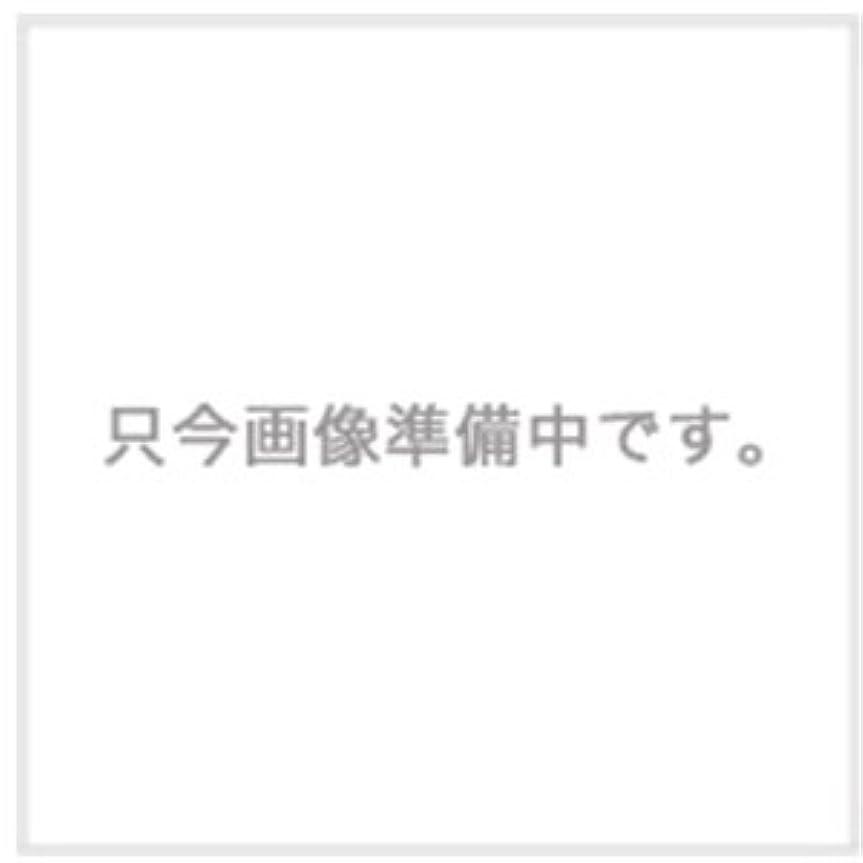 比較的きつく汚れたハホニコ ザ・ラメラメ トリートメント No.1 1000g用ハードケース