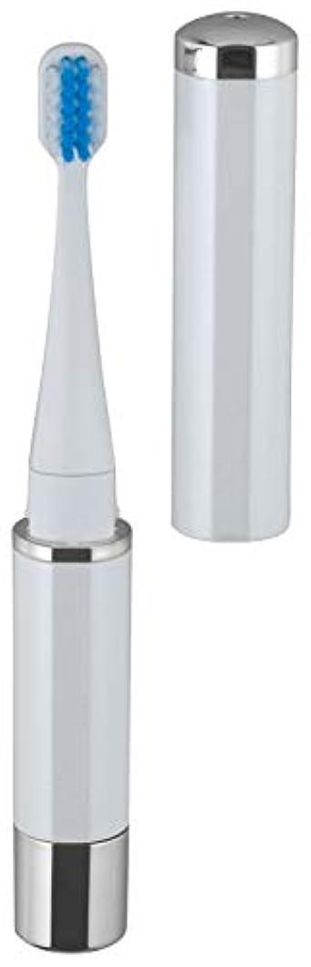 ビスケット聖書顔料ロゼンスター マイナスイオン 音波振動歯ブラシ 白 TB-100W