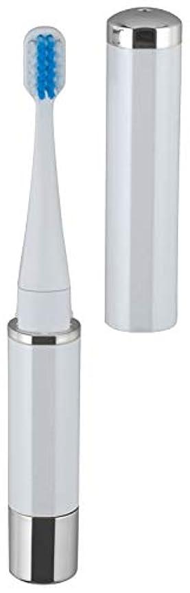 発送拮抗テロロゼンスター マイナスイオン 音波振動歯ブラシ 白 TB-100W