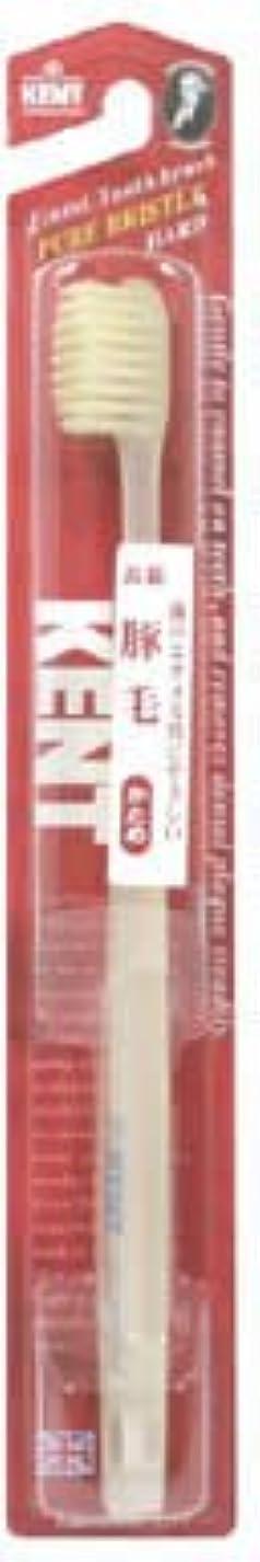 ケーブルカー振り子バレルKENT(ケント) 豚毛歯ブラシ H (かため)