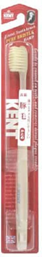 酸っぱい特許レオナルドダKENT(ケント) 豚毛歯ブラシ H (かため)
