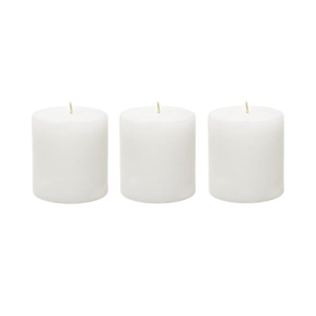 ゲスト気づく不平を言う(6, 7.6cm x 7.6cm Round) - Mega Candles - Unscented 7.6cm x 7.6cm Hand Poured Round Premium Pillar Candle - White