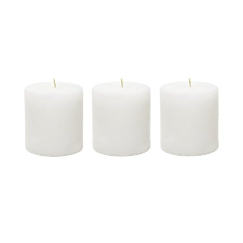 骨髄後継状況(6, 7.6cm x 7.6cm Round) - Mega Candles - Unscented 7.6cm x 7.6cm Hand Poured Round Premium Pillar Candle - White