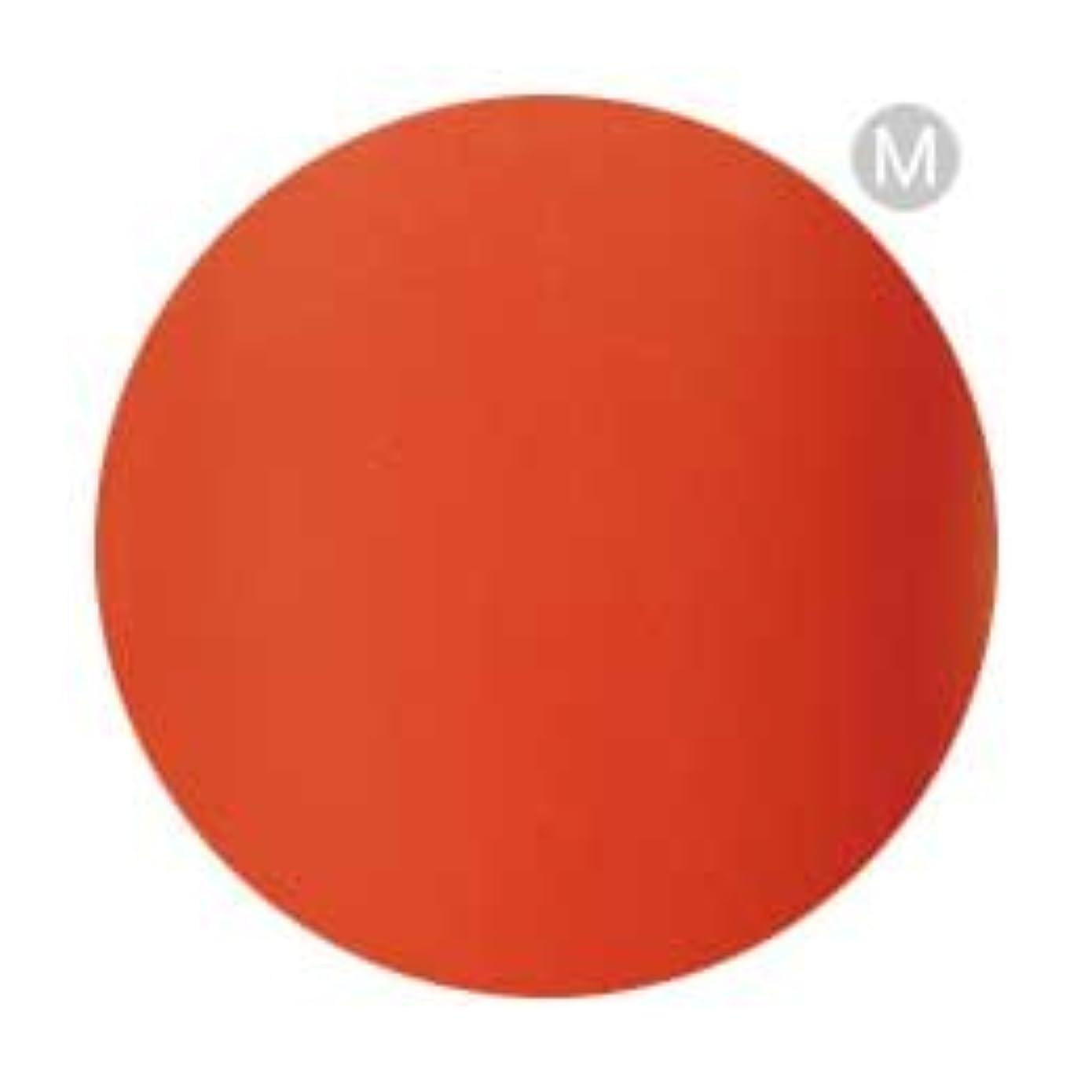 ドラム側面地中海Palms Graceful カラージェル 3g 077 タンジェリンオレンジ