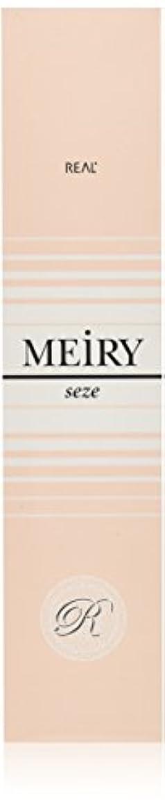 神学校空白悪夢メイリー セゼ(MEiRY seze) ヘアカラー 1剤 90g 4WB