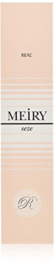トラフィック旅行代理店パトロンメイリー セゼ(MEiRY seze) ヘアカラー 1剤 90g 4WB
