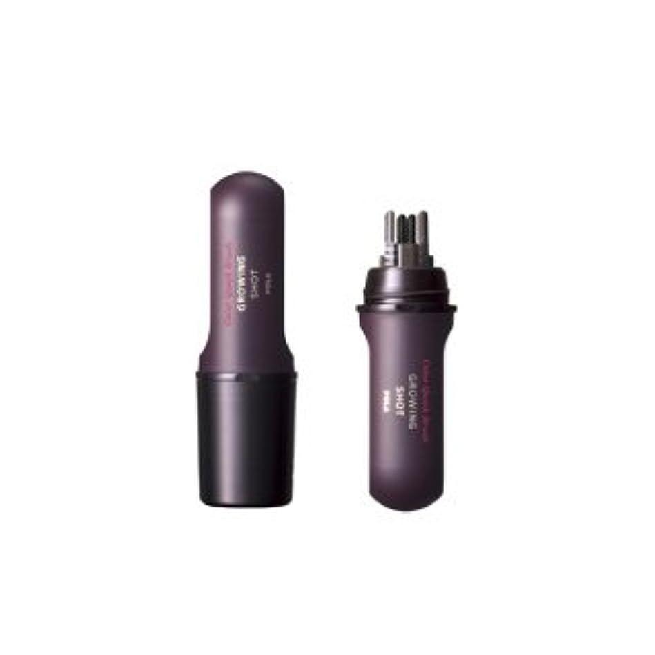 装置絡み合いディレクトリPOLA ポーラ グローイングショット カラークイック ブラシ BK(ブラック) 10ml