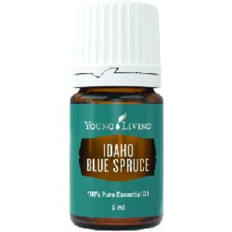 バンケット冷える弁護士アイダホブルースプルースエッセンシャルオイル5ml by Young Livingエッセンシャルオイルマレーシア Idaho Blue Spruce Essential Oil 5ml by Young Living Essential...