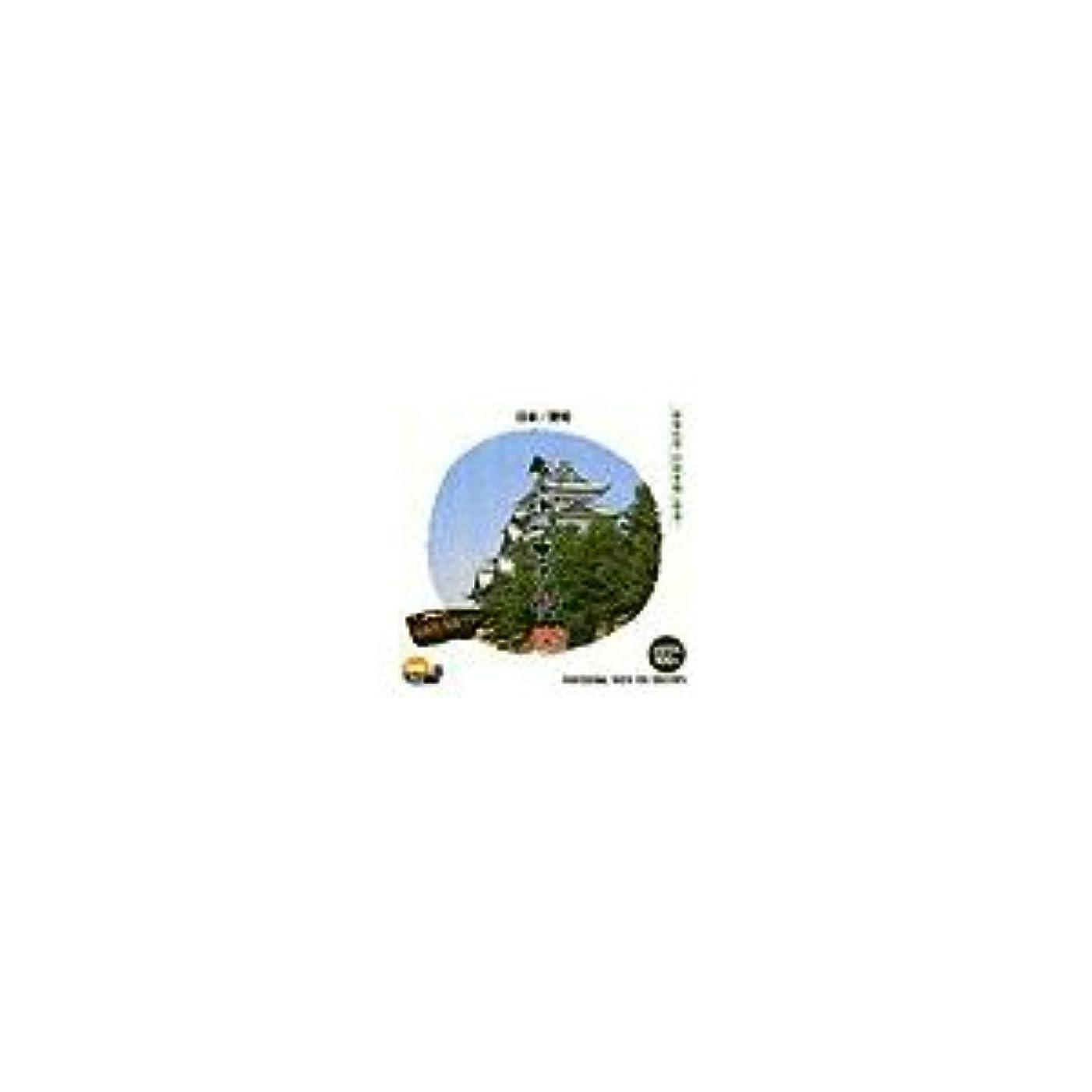 魅力故障ビーム写真素材 創造素材 日本/愛知(PhotoCD版)