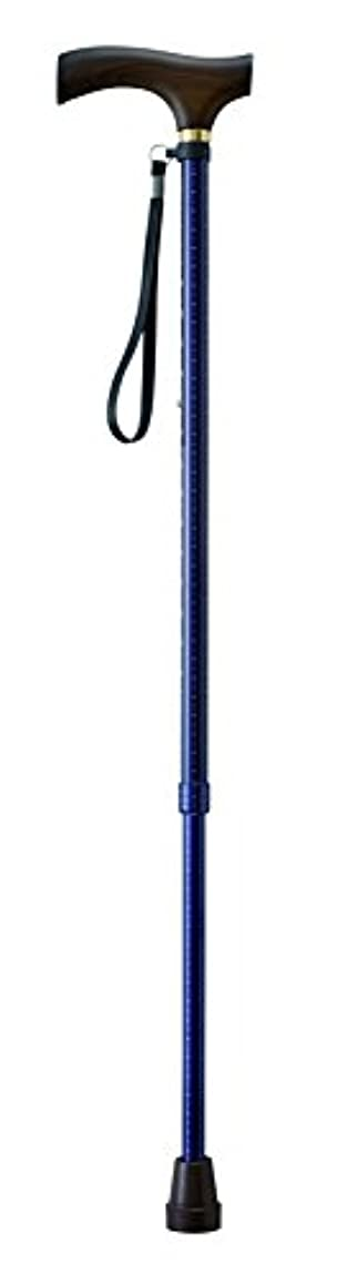 エチケットランデブー内向き幸和製作所 テイコブ伸縮ステッキ ドットネイビー EP02
