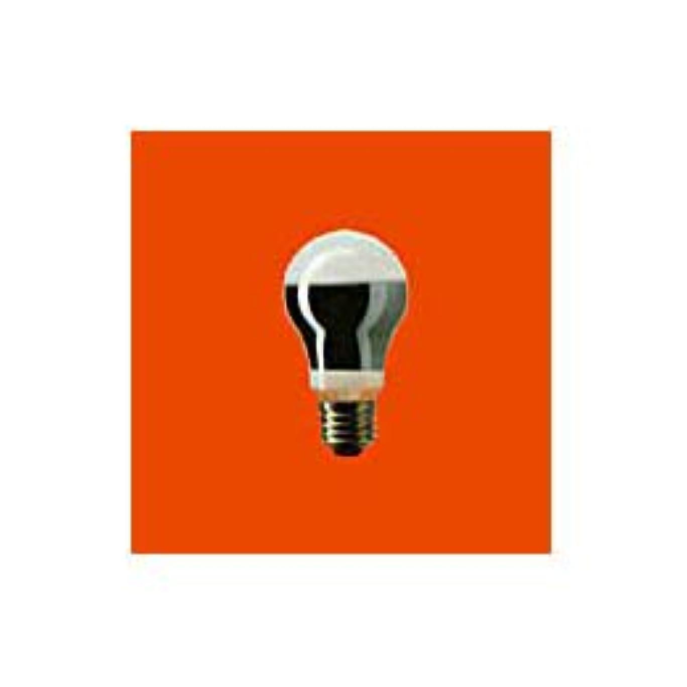 徹底的に干渉する枢機卿【まとめ 4セット】 PANASONIC 鶏舎用電球30W形ホワイト K-RK110V30W/D