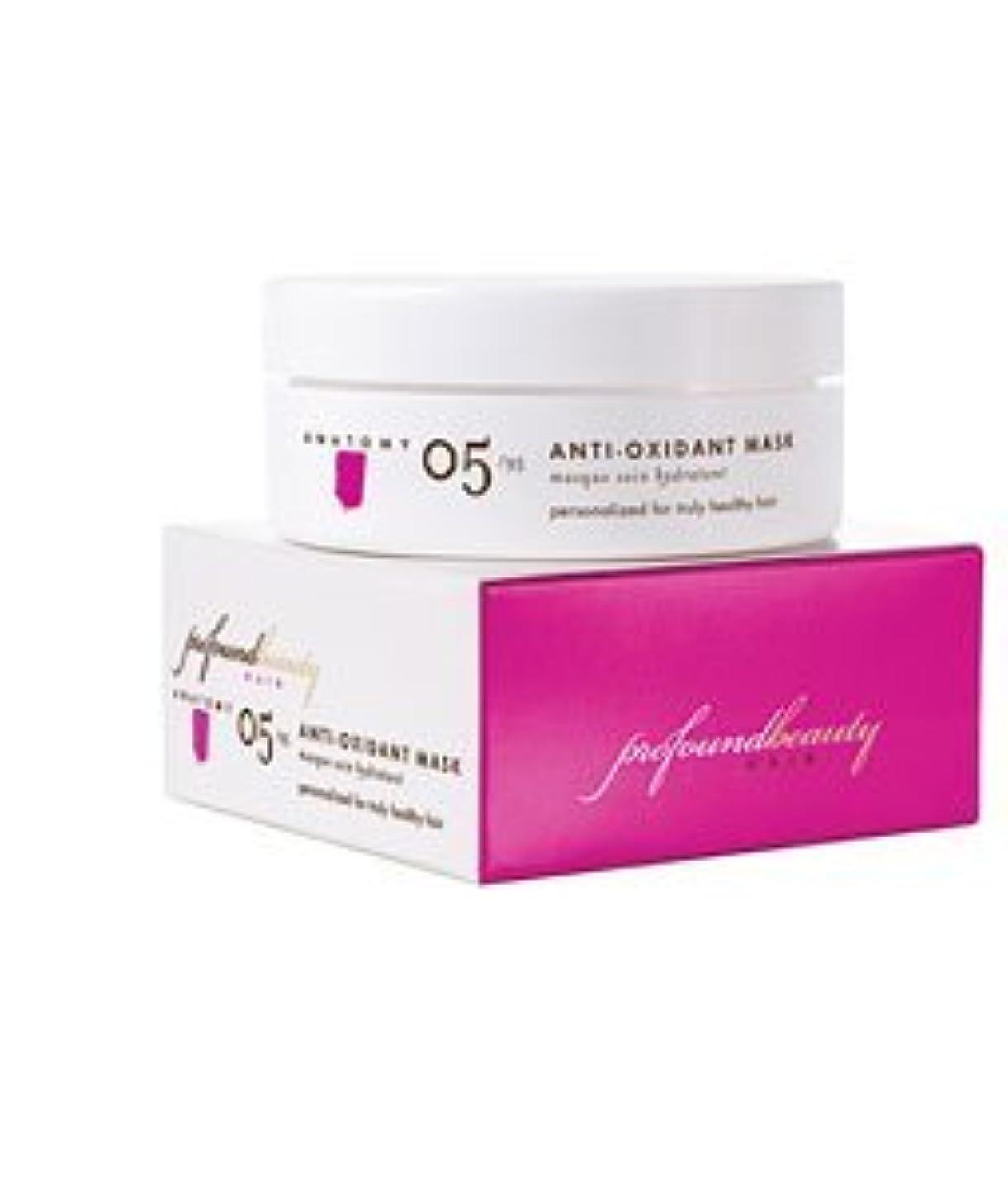 チャンス型つかの間Profound Beauty Hair 深遠な美し05/95抗酸化マスク、4オンス