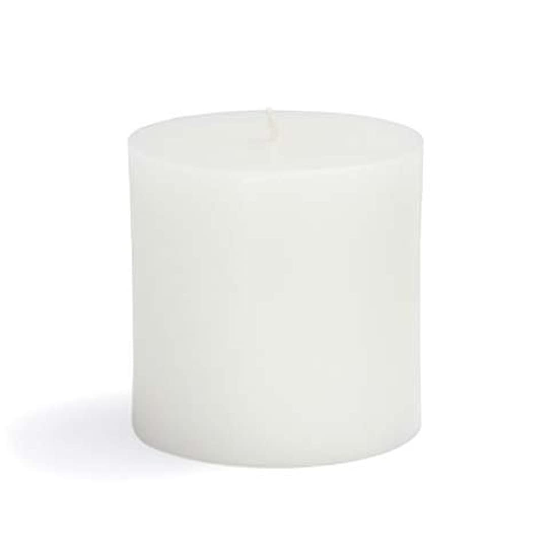 トラブル徴収失Zest Candle CPZ-071-12 3 x 3 in. White Pillar Candles -12pcs-Case- Bulk