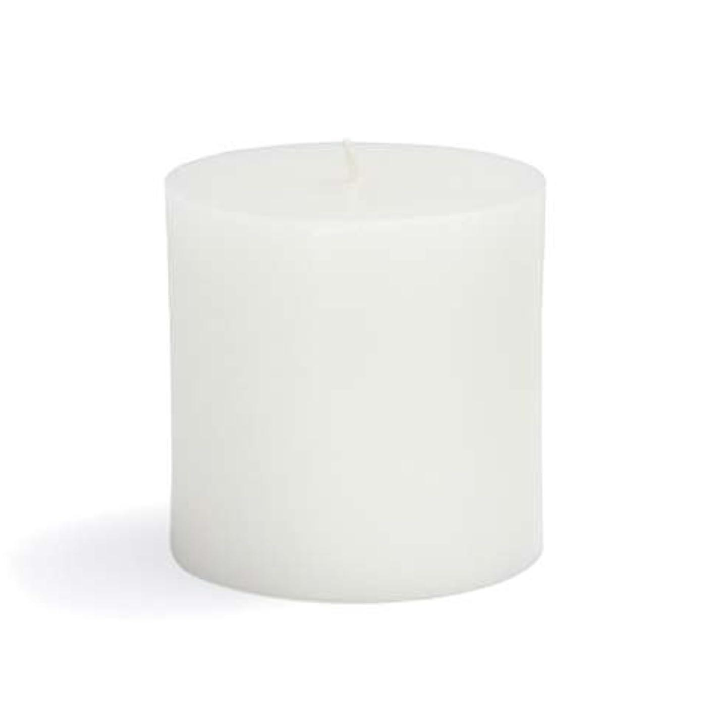 分泌する呼ぶ保存するZest Candle CPZ-071-12 3 x 3 in. White Pillar Candles -12pcs-Case- Bulk