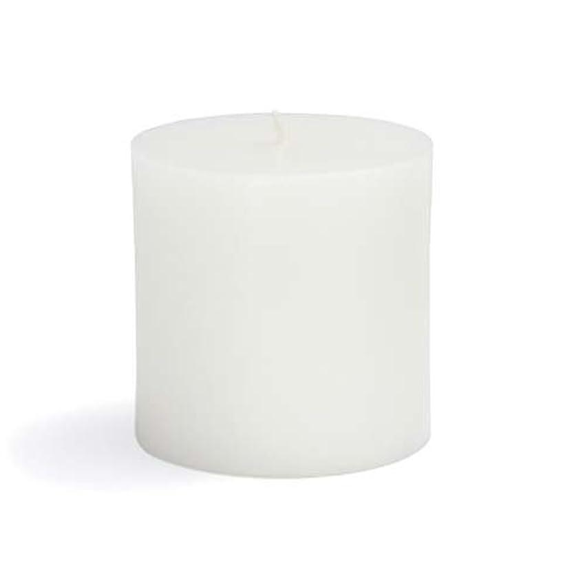 延期する未来盆地Zest Candle CPZ-071-12 3 x 3 in. White Pillar Candles -12pcs-Case- Bulk