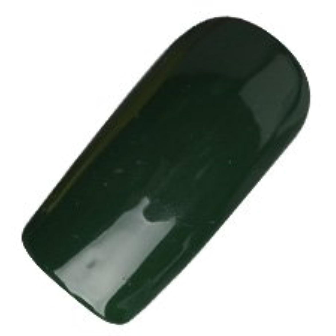 民間役立つ透明にDASHING DIVA(ダッシングディバ) ララジェル カラージェル 4g N―041M ジェーンバッグ
