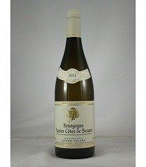 ■ジャイエ・ジル ブルゴーニュ オート コート ド ボーヌ ブラン[2011](750ml)白 JAYER GILLES Bourgogne Hautes-Cotes de Beaune Blanc[2011]