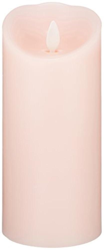 小包生態学剥ぎ取るLUMINARA(ルミナラ)ピラー3×6【ギフトボックス付き】 「 ピンク 」 03070020BPK
