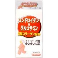 ファイン コンドロイチン&グルコサミン(ふしぶしの恵(R)) 【人気 おすすめ 】
