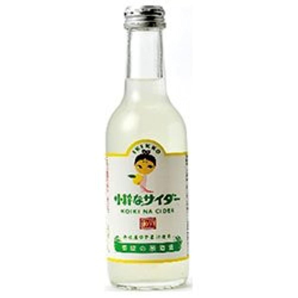 ストッキング省実証する友桝飲料 小粋なサイダー(ゆず) 245ml瓶×24本入