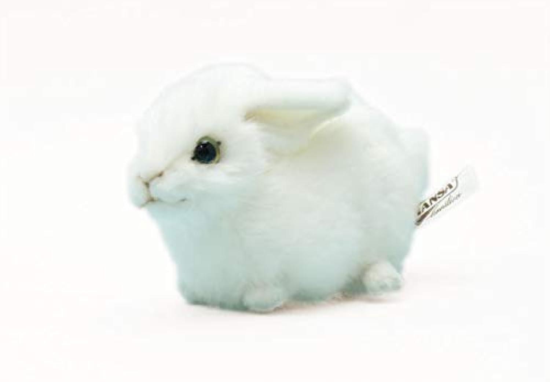 HANSA ハンサ/ウサギ 16 / 5823