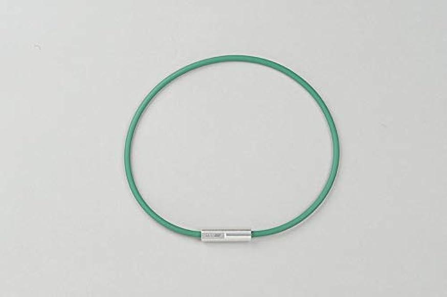 コーラス動脈価格SEV Looper(ルーパー) type M 46サイズ グリーン