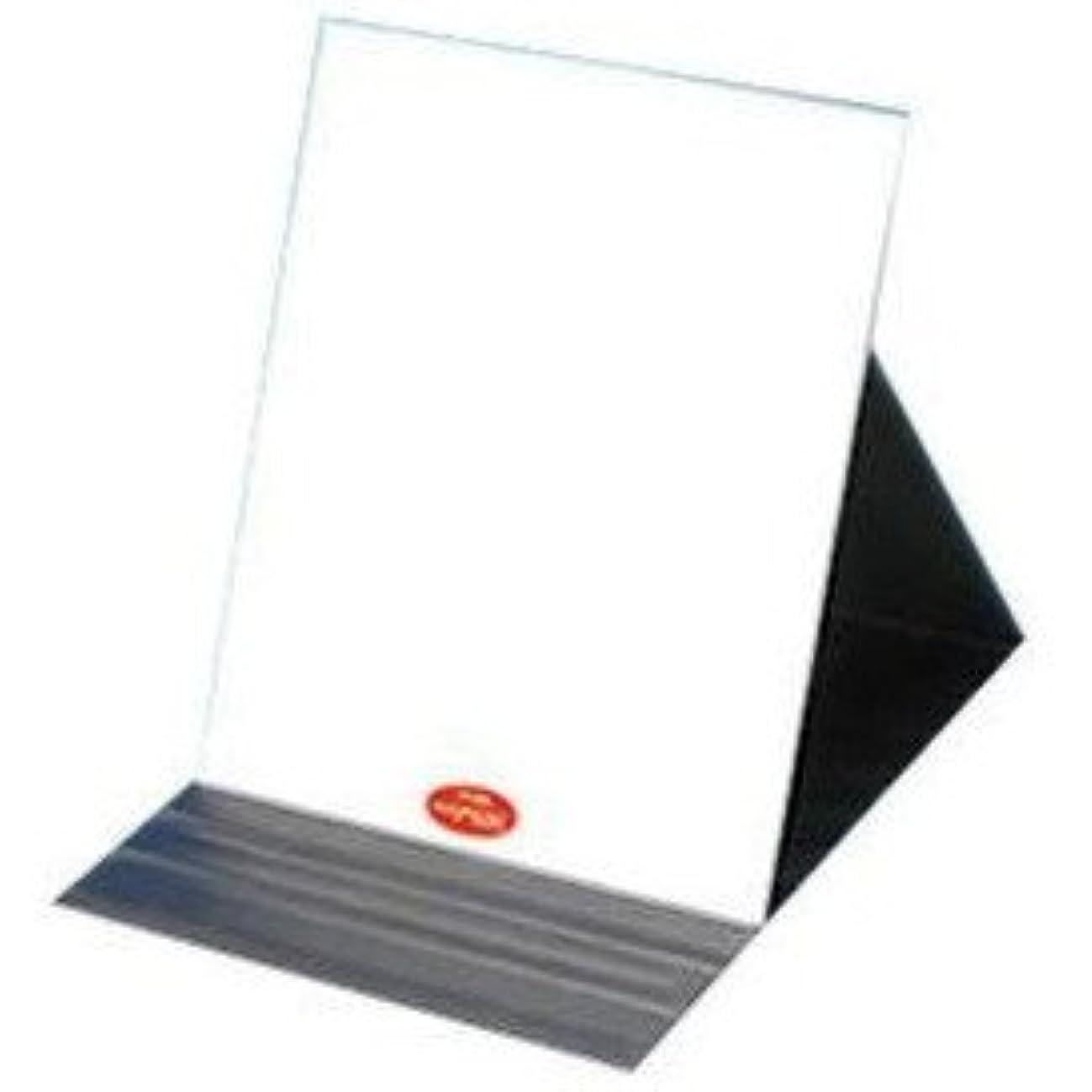 けがをする遅れエネルギーありのままの貴女を映し出す鏡『ナピュア プロモデル角度調整3段階付き折立ミラー エコ3L』