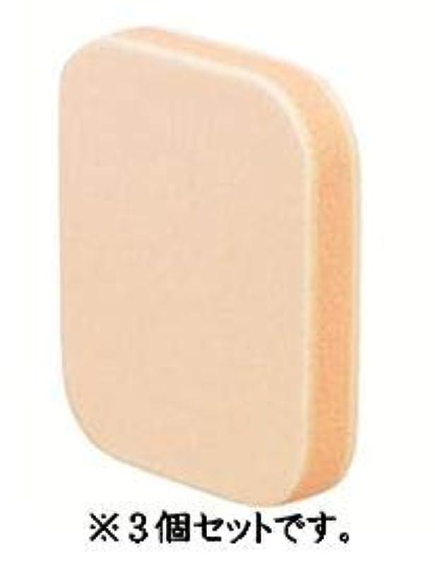 磁気不十分な含意カバーマーク シルキー フィット スポンジ 3個セット
