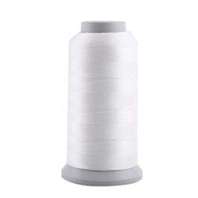 消去安全性アイスクリーム蓄光糸 夜光刺しゅう糸?刺繍糸、光る糸 ホワイト/1000(Y)ヤード 1枚入り