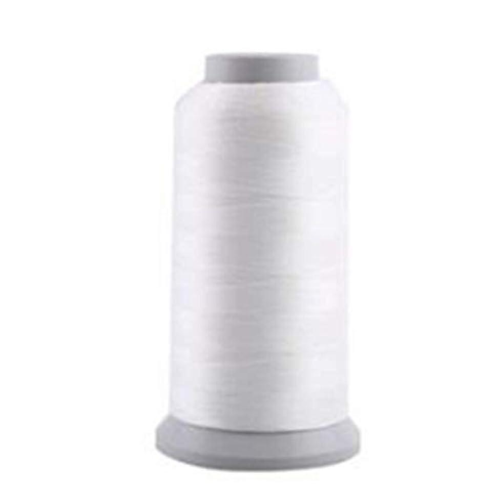 支援手配するひばり蓄光糸 夜光刺しゅう糸?刺繍糸、光る糸 ホワイト/1000(Y)ヤード 1枚入り