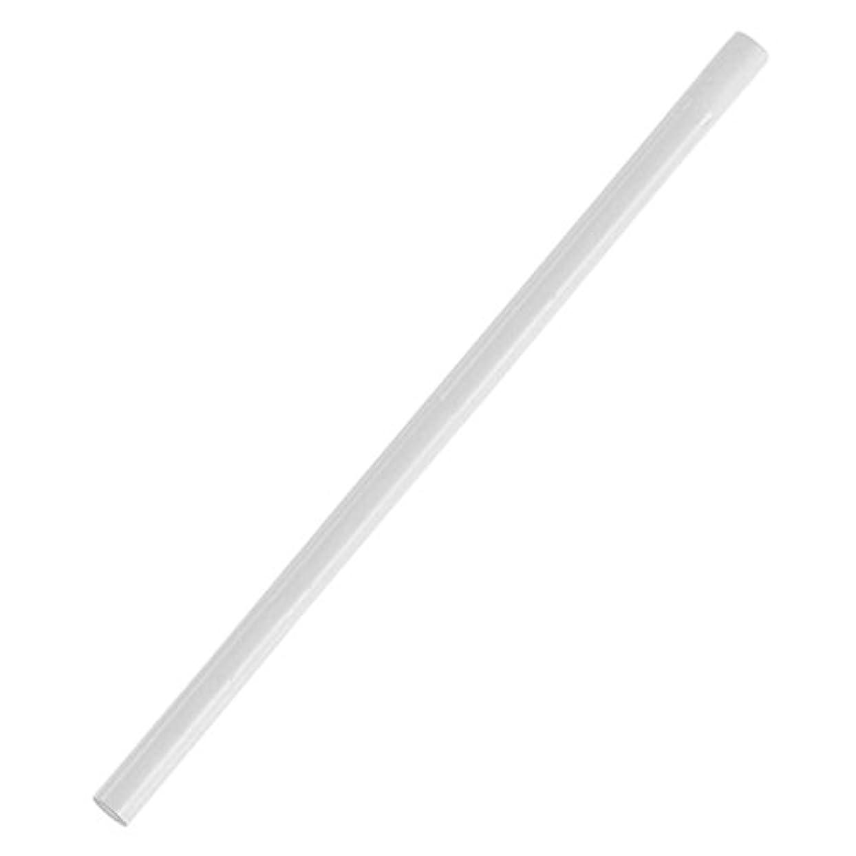 支配的利益魅惑するVaorwne 10x白いドット打ち鉛筆 ネイルアートラインストーン宝石3Dデザインのため 画家デコレーション ピッキングツール
