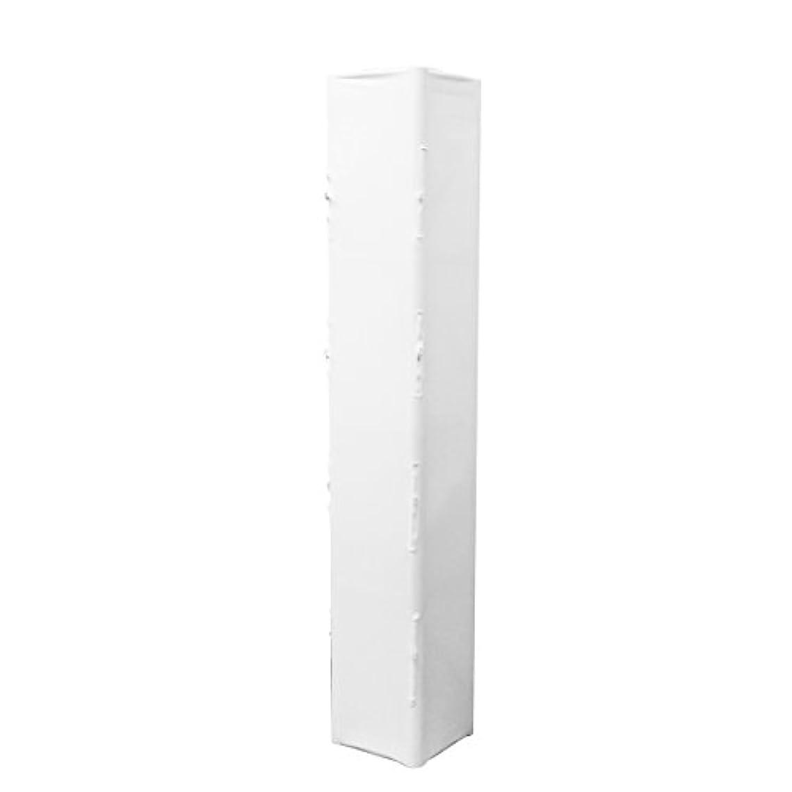 ライトニング変形期待するOdyssey Cases ts1206cz |紗幕Werks 6フィートジッパーアクセスシリーズII Slip画面