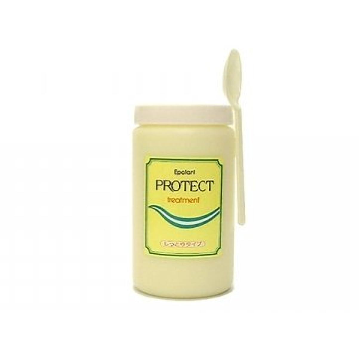 色合い保持勢いエポラール プロテクトヘアトリートメント (しっとりタイプ) 1kg 【中央有機化学】