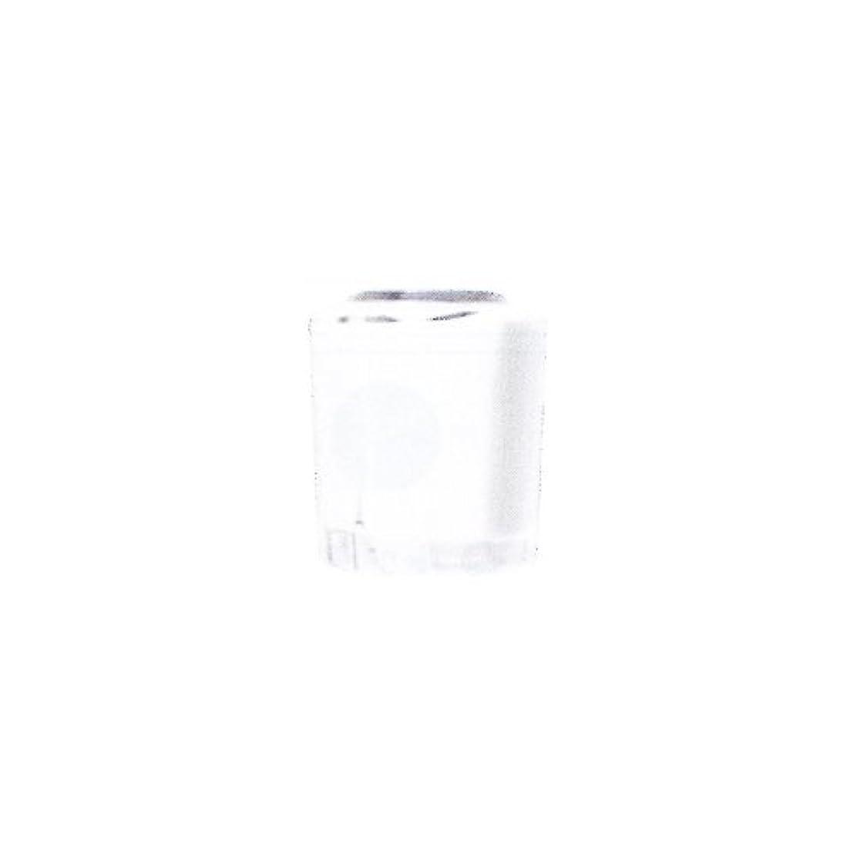 有益な意識的帳面SHAREYDVA カラー15ml No.02 マットホワイト