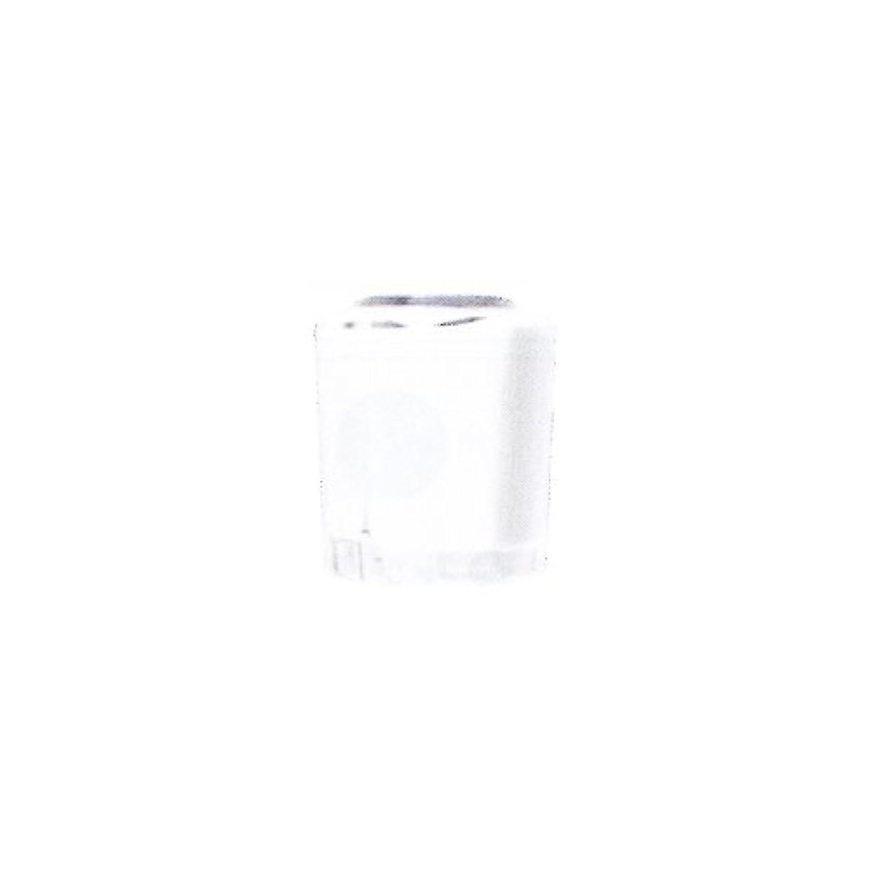 テロ慣らすレトルトSHAREYDVA カラー15ml No.02 マットホワイト