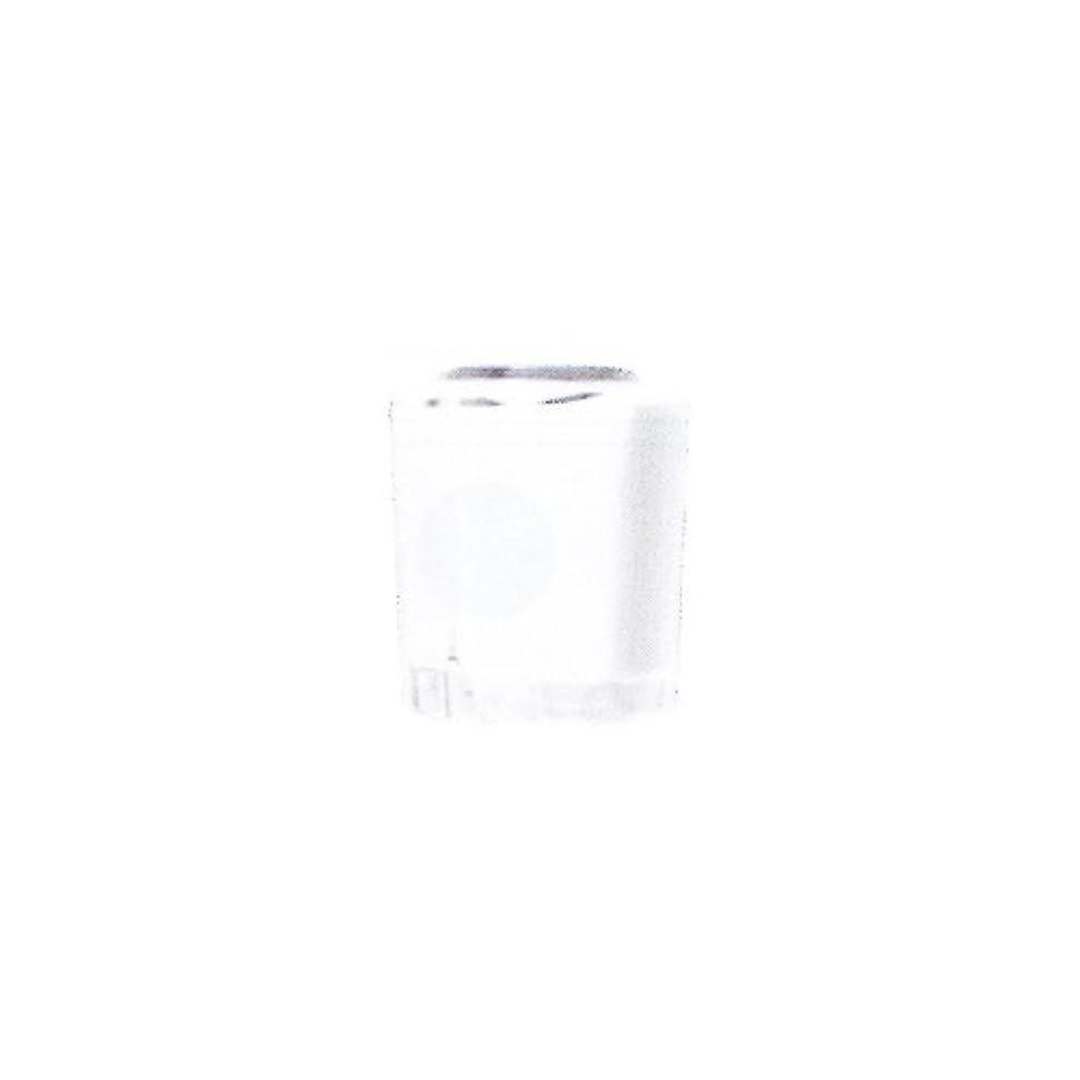 価値売上高パステルSHAREYDVA カラー15ml No.02 マットホワイト