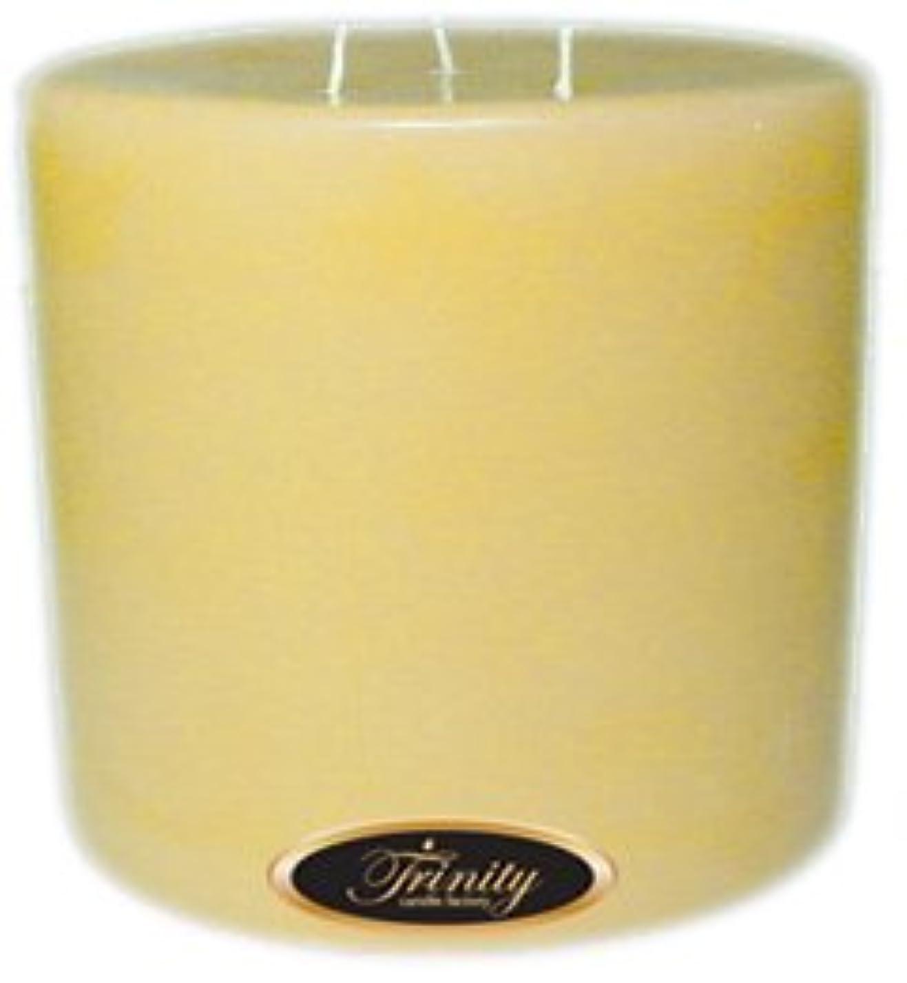 先例動物園誰でもTrinity Candle工場 – クリーミーバニラ – Pillar Candle – 6 x 6