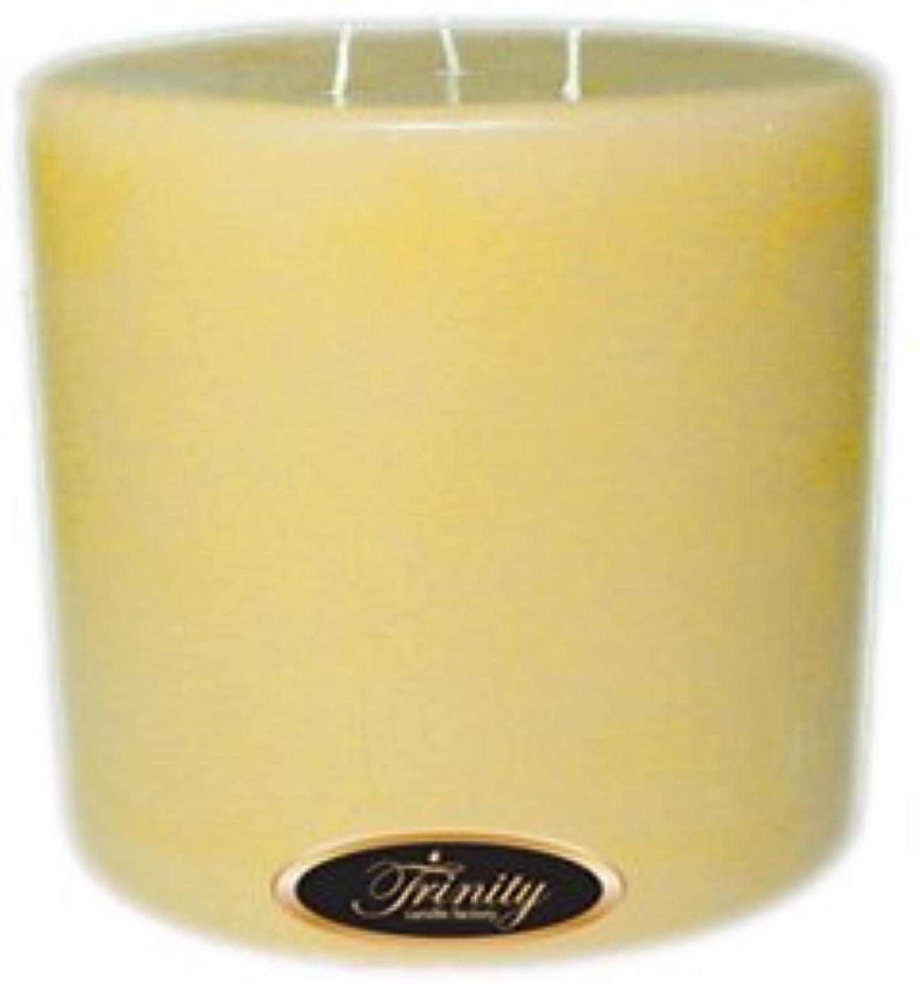 摩擦どちらもコーチTrinity Candle工場 – クリーミーバニラ – Pillar Candle – 6 x 6