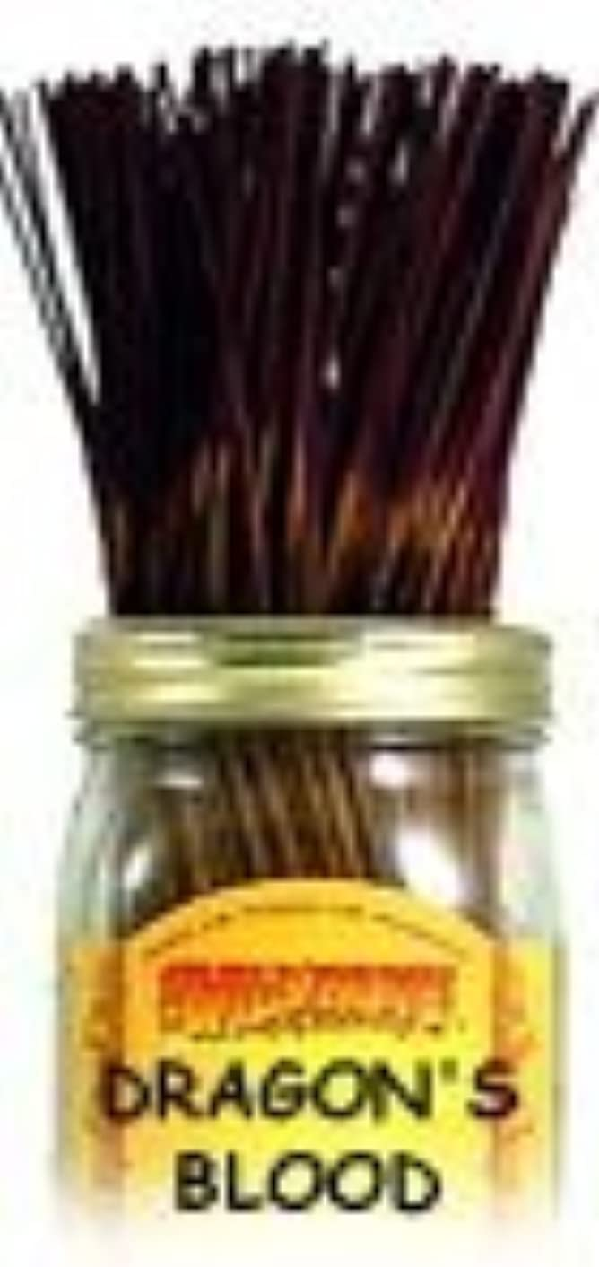 レイアウト愛する授業料Dragon's Blood - 100 Wildberry Incense Sticks
