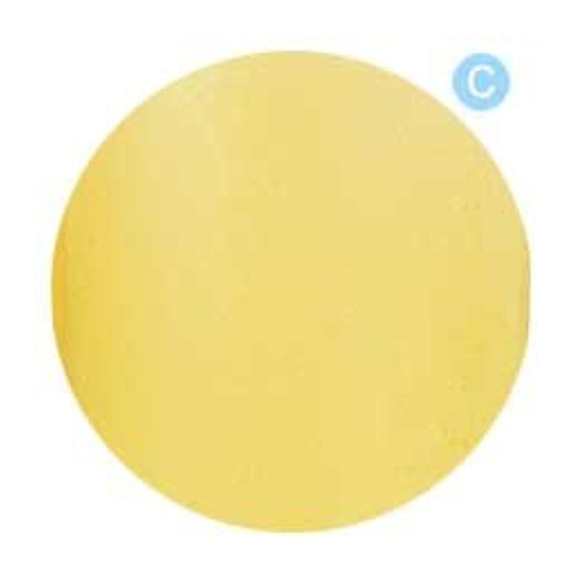 引退する精査する前提条件Palms Graceful カラージェル 3g 019 クリアレモン