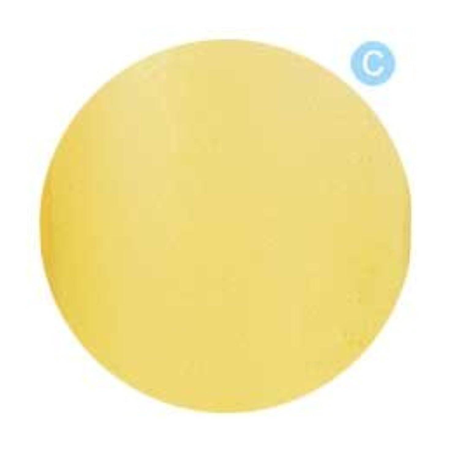 ここに深遠レクリエーションPalms Graceful カラージェル 3g 019 クリアレモン