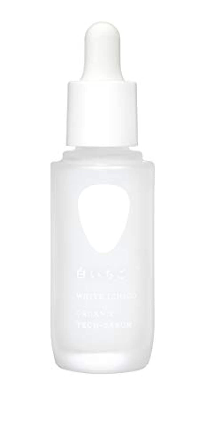 効率的にくつろぎ未使用WHITE ICHIGO(ホワイトイチゴ) オーガニック テック-セラム 30g