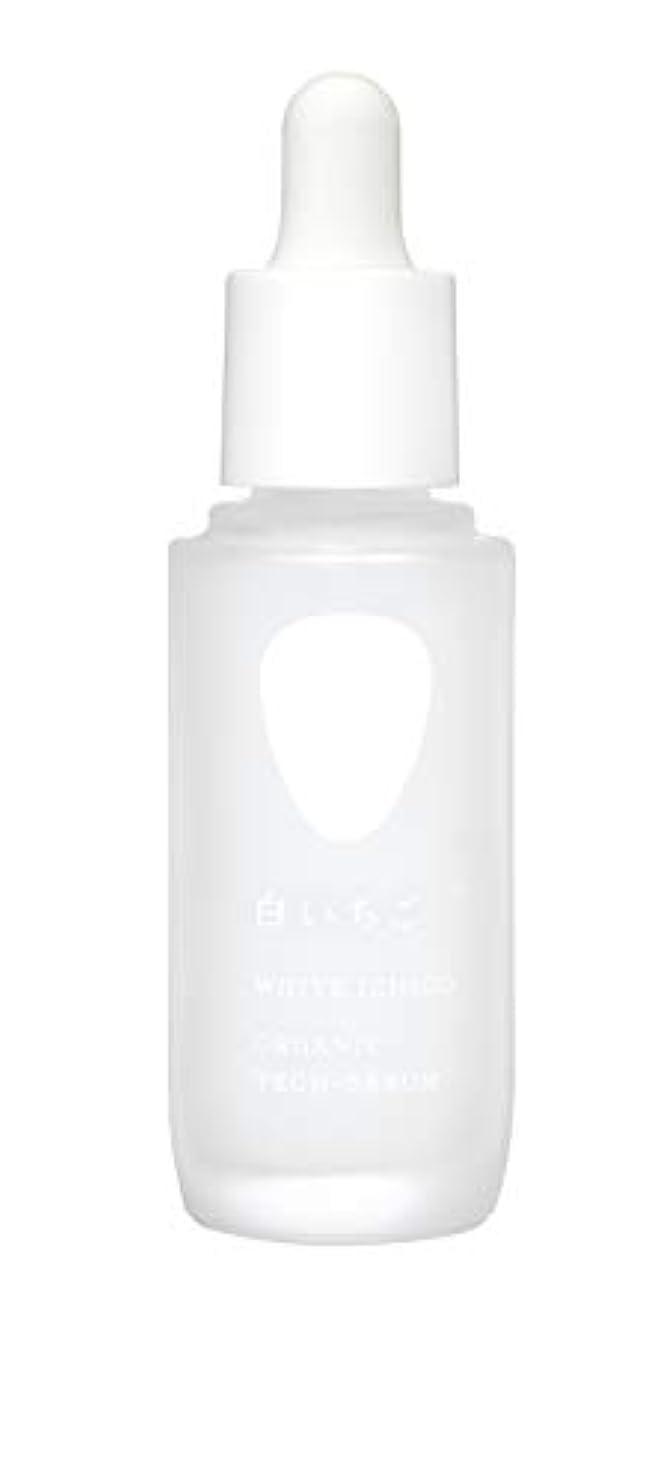 書士床を掃除する時WHITE ICHIGO(ホワイトイチゴ) オーガニック テック-セラム 30g
