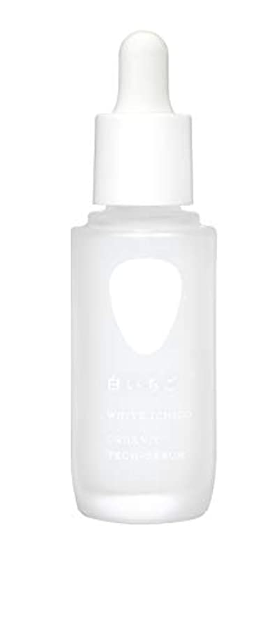 圧縮されたペインティング中央値WHITE ICHIGO(ホワイトイチゴ) オーガニック テック-セラム 30g