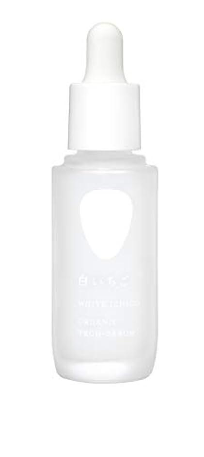 小道失小包WHITE ICHIGO(ホワイトイチゴ) オーガニック テック-セラム 30g