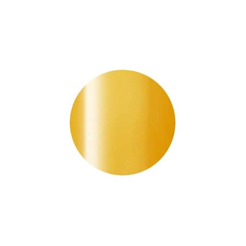 Presto プレスト カラージェルミニ JC-60 2.7g