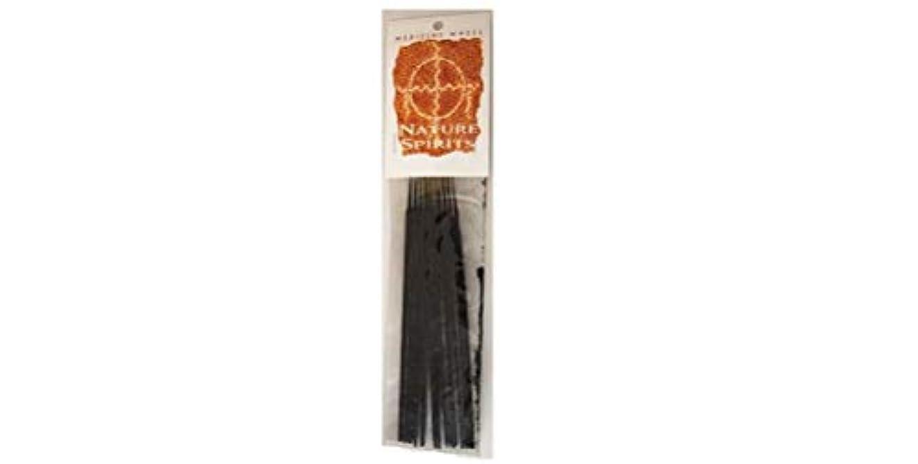 確立ステージパイSweetgrass Medicine Wheel Stick Incense