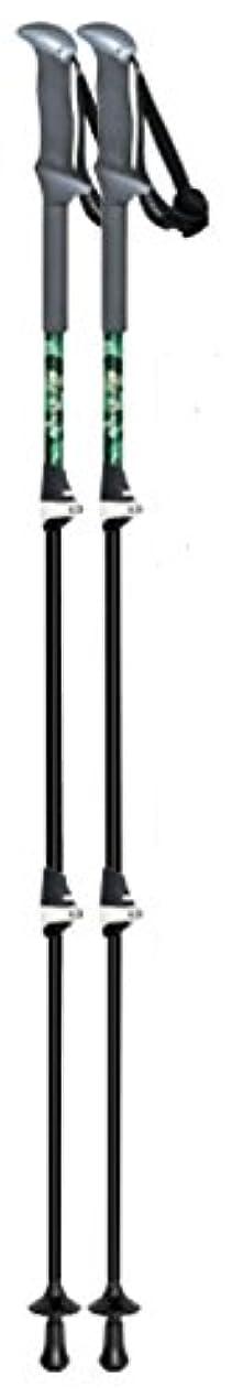 新聞遊具食堂シナノ(SINANO) 登山 トレッキングポール 軽量レバーロックモデル Fast -115 カーボンW グリーン 113419